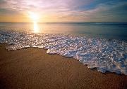 Những con sóng phơi khô