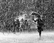 Huế khát mưa
